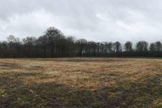 Baugebiet: Tappenfeld